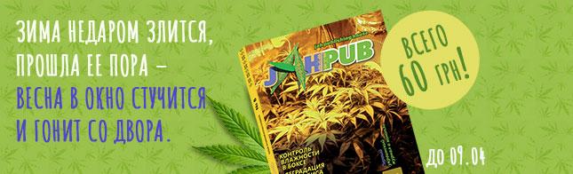 Стартует предзаказ на 8-й выпуск журнала JahPub!