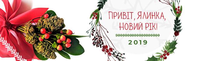 Привіт, Ялинка, Новий рік!