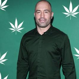 Джо Роган про марихуану