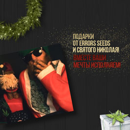 Подарунки від Errors Seeds та Святого Миколая! Разом ваші мрії здійснюємо!