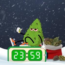 Новогодние подарки для клиентов Errors Seeds!