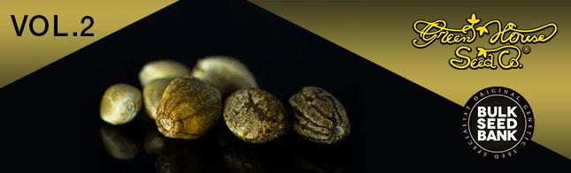 Європейська якість у Errors Seeds! Свіже насіння від Green House Seeds  і Bulk Seed Bank!