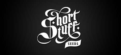 Shortstuff Seeds auto fem