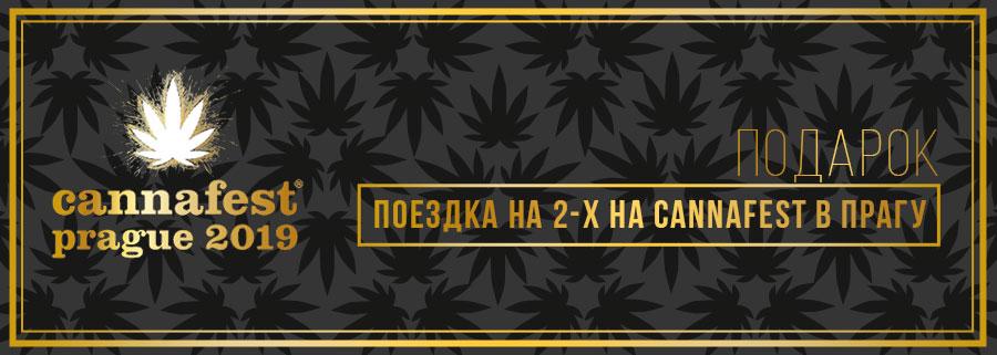 конопля в культуре славян