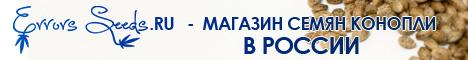 Купить семена конопли в России